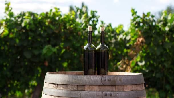 Витримка вина