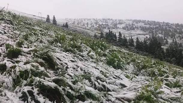 На початку липня на Карпатах випав сніг (ілюстративне фото)