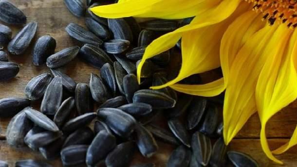 Насіння соняшника корисне для здоров'я
