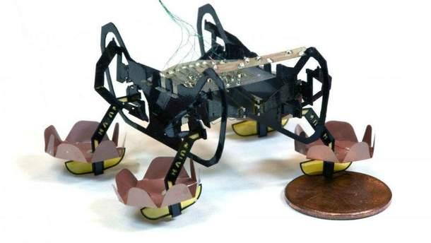 Робот-тарган