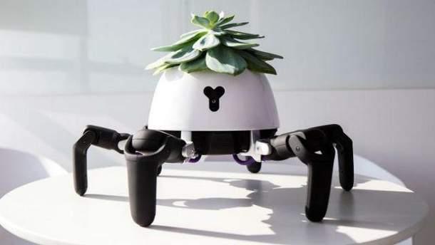 Китаєць створив робота, що доглядає за домашніми рослинами: як це виглядає