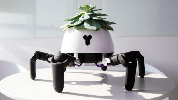 Китаец создал работа, который ухаживает за домашними растениями: как это выглядит