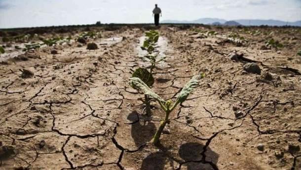 В оккупированном Крыму назрела экологическая катастрофа
