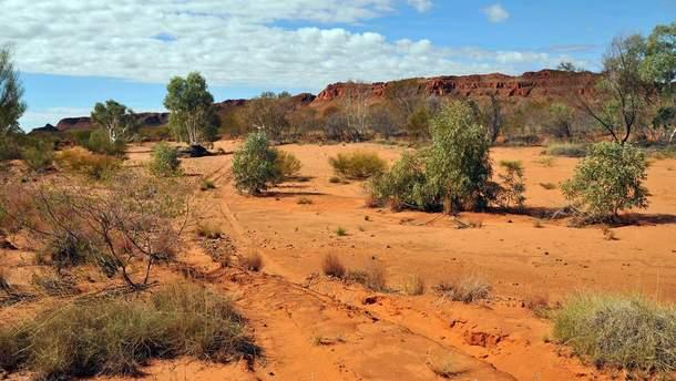 Австралія страждає від великої спеки