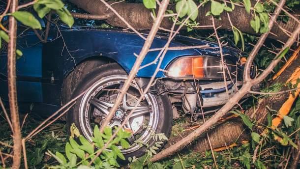 Автомобіль іноземця зупинився лише тоді, коли врізався у дерево на подвір'ї приватного будинку