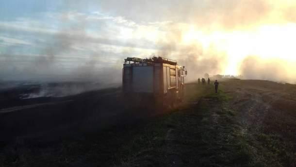На Львівщині масштабна пожежа
