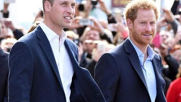 Принц Вільям і принц Гаррі