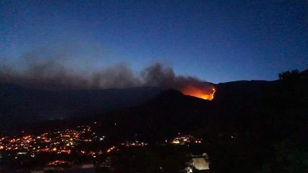 В оккупированном Крыму ликвидировали масштабный лесной пожар