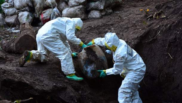 У Мексиці розкопали найбільшу в історії країни партію наркотиків