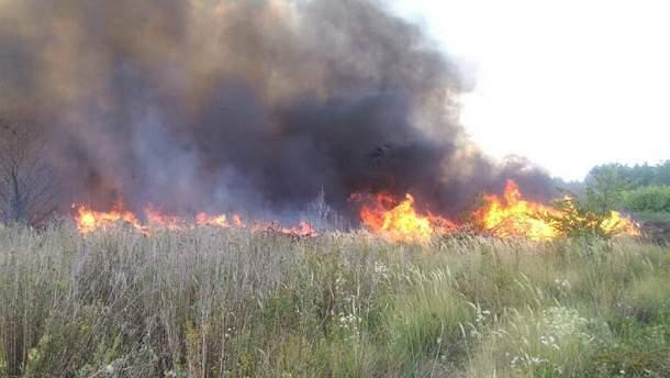 На Харківщині жінка загинула під час випалювання сухостою