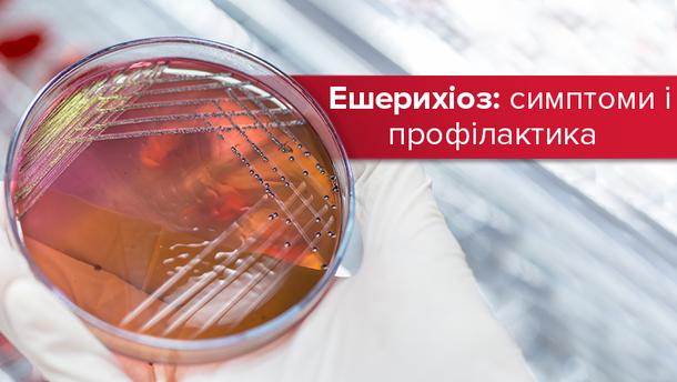 Ешерихіоз: симптоми і профілактика