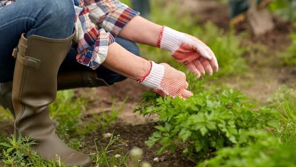 Может ли навредить здоровью агрофитнес