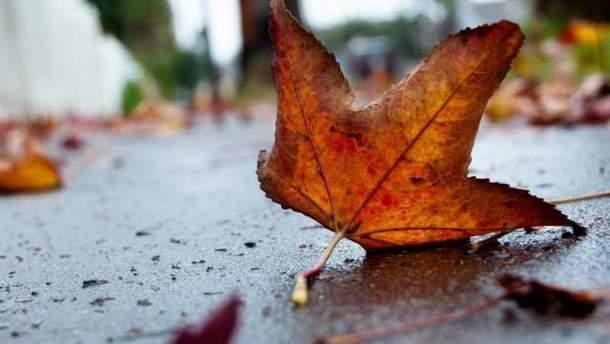 Погода на осінь 2018  синоптики прогнозують два бабиних літа і ... 7922c03f98a2e