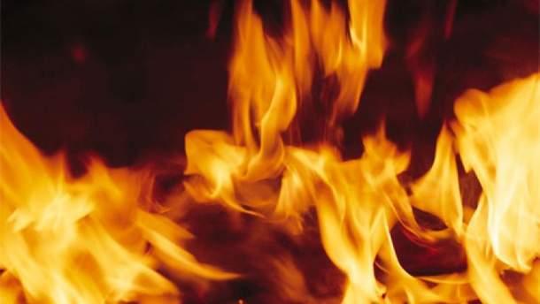 В Харьковской области горит 10 гектаров лесной подстилки