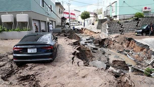 Наслідки землетрусу в Японії