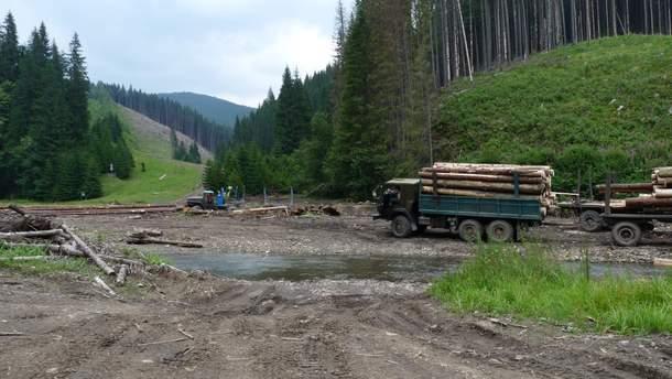 Верховная Рада отменила мораторий наэкспорт «дров»