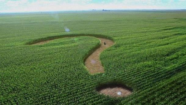 Земельный рынок в Украине