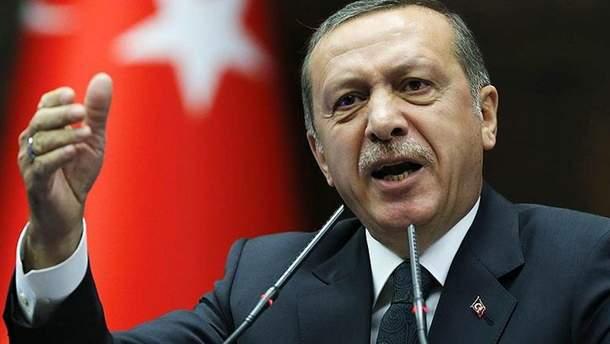 Эрдоган призвал остановить наступление сирийского правительства на Идлиб