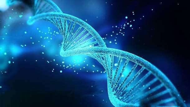 Пятая часть генов человеку не нужна