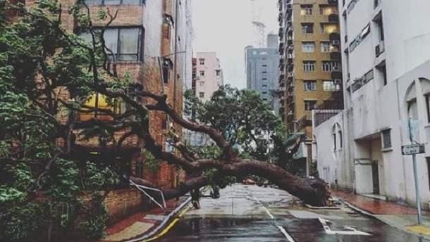 Гонконг поразила мощная стихия: люди делятся снимками разрушений