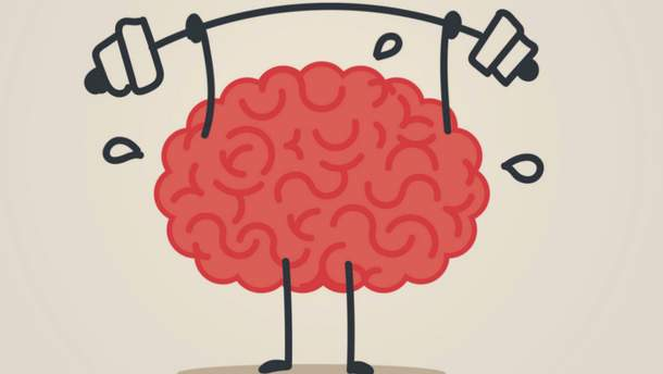 Які продукти уповільнюють старіння мозку