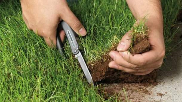 Агрорейдерство в Україні: три гучні історії пограбування чужого врожаю