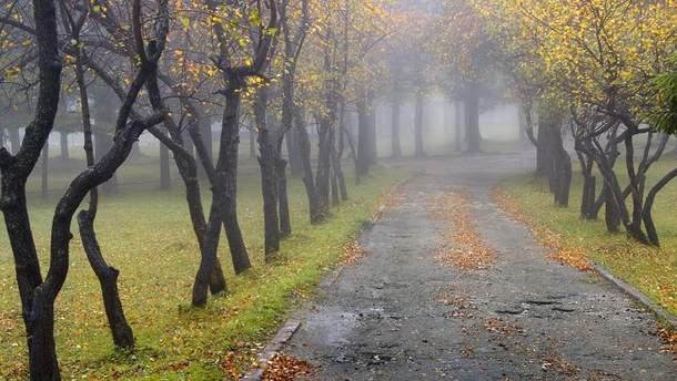 Прогноз погоды в Украине на 29 сентября