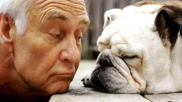 Які професії впливають на розвиток старечого слабоумства