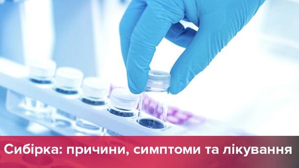 Сибирская язва в Украине – симптомы, лечение и профилактика