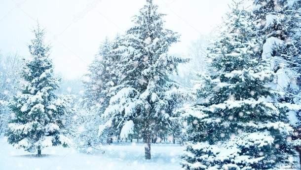 На горе Поп Иван выпал снег