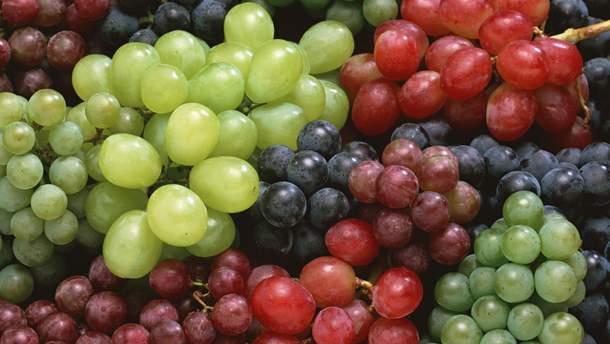Ученые выяснили, что кожура винограда содержит естественный антибиотик, способный побороть рак легких