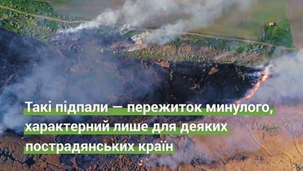 Чем опасно сжигание сухой травы и листьев