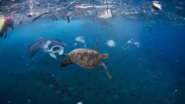 До 2050 року в океані платику буде більше, ніж риби