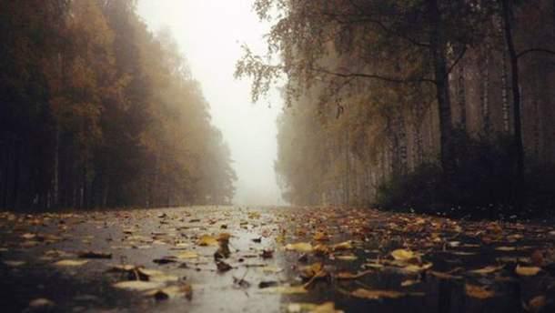 Коли в Україні похолодає: відповідь синоптика