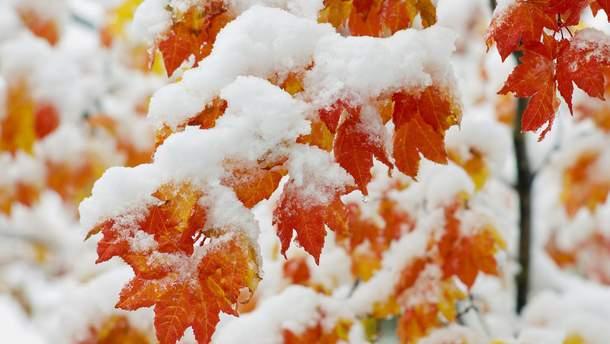 Буде мороз та сніг: народний синоптик зробив прогноз на листопад