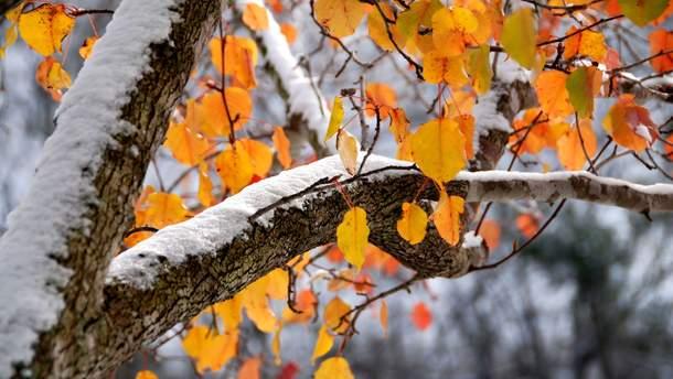 Дощі, мокрий сніг і хуртовини: в Україну йде сильне похолодання