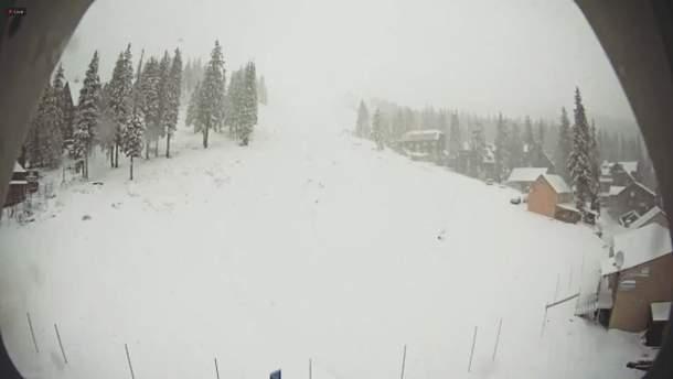 Карпати засипало снігом: