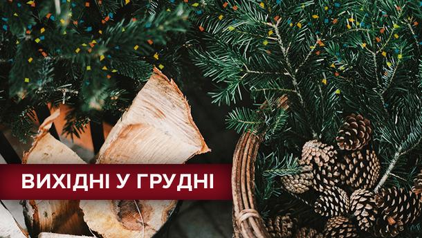 Выходные дни в декабре 2018 в Украине: календарь