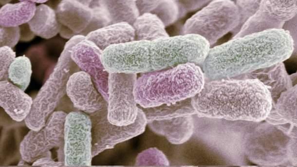 Ученым удалось разработать новое лекарство от туберкулеза