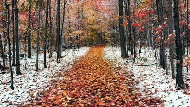 Синоптик розповів, коли у листопаді вдарять морози