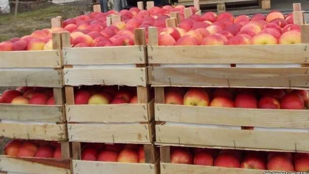 В Беларуси задержали украинца за контрабанду фруктов