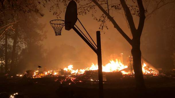 В Калифорнии бушуют масштабные лесные пожары