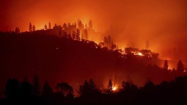 Стихийный пожар в Калифорнии самый мощный за последние 85 лет