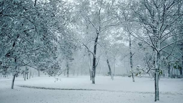 Крим засипало снігом: неймовірні фото і відео