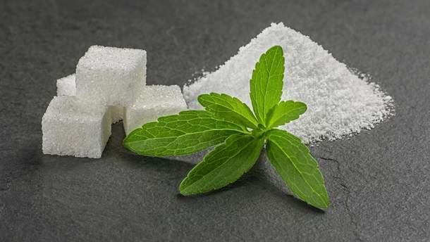 Стевия как заменитель сахара: какая от нее польза