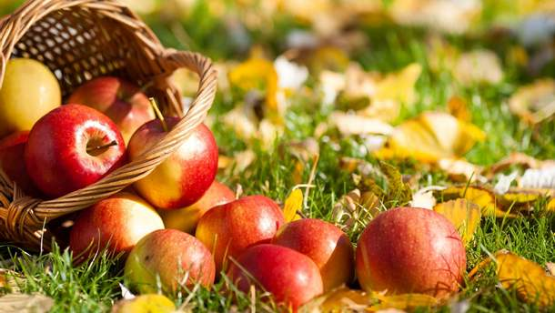 Яблуко має унікальні властивості