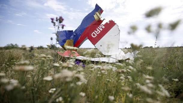 """ПА НАТО требует от Кремля взять ответственность за сбивание """"Боинга"""" над Донбассом"""