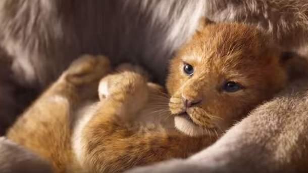 Король Лев 2019 - трейлер оновленого мультфільму - дивитися онлайн