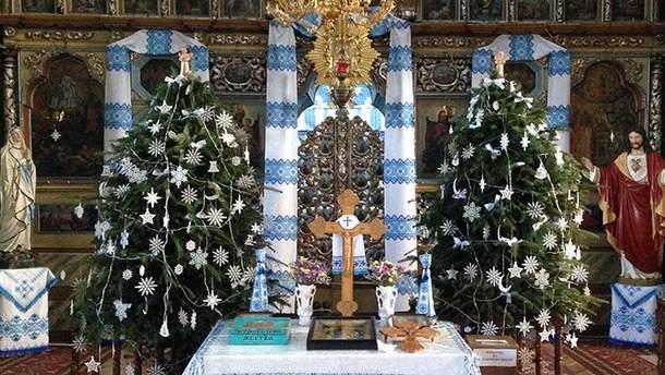 В УГКЦ призвали от отказа от живых елок на Рождество и Новогодние праздники