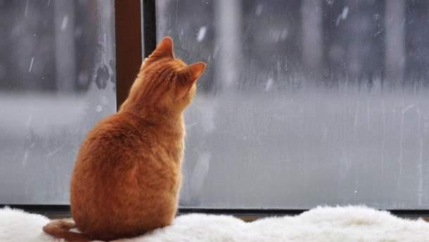 Погода на 3 грудня в Україні